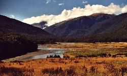 Just behind the Haast Pass. (click for enlargement)